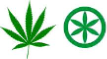 disegno stella e marijuana